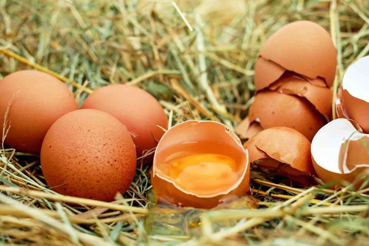 Cách luộc Trứng siêuphẩm
